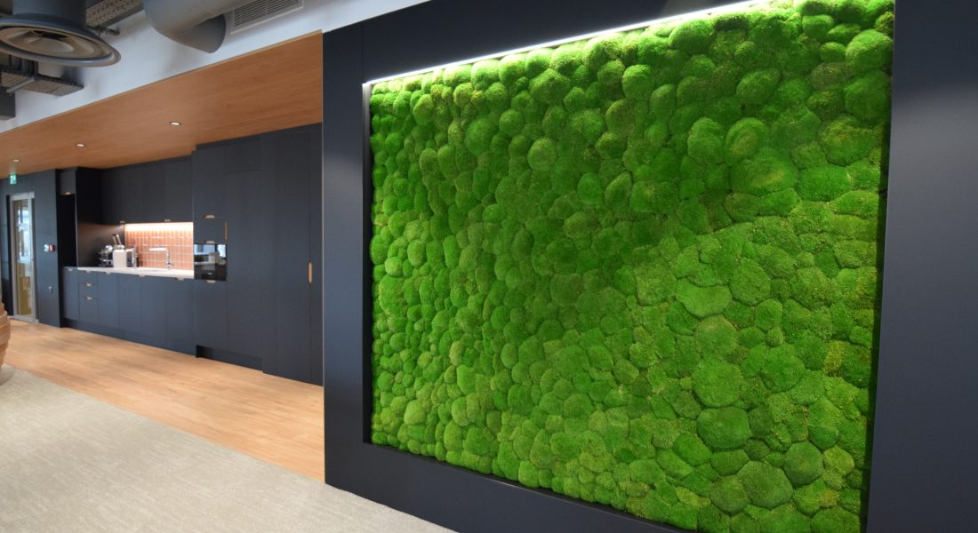16 Moss wall
